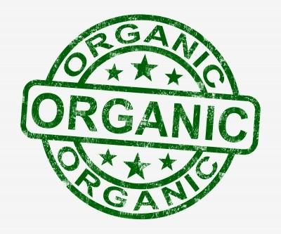 top organic protein powder
