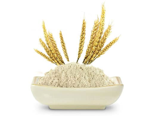 Sprouted-Brown-Rice-Protein1