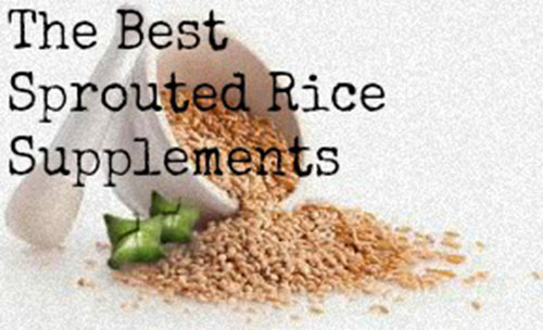 The 3 Best Sprouted Rice Protein Supplements