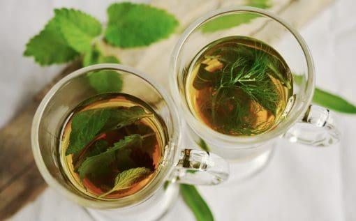 top 5 best detox teas for weight loss