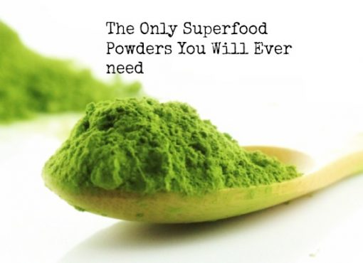 The Best Superfood Powder Supplements Ever
