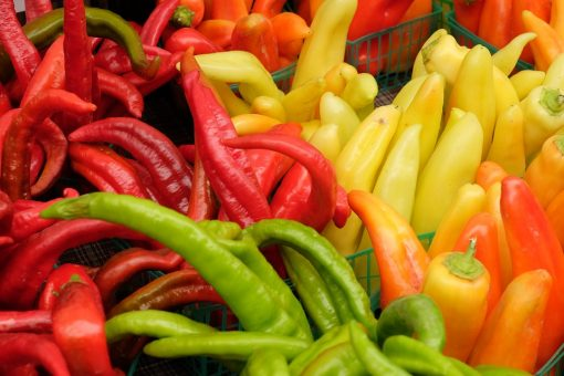 the top 10 veggies for weight loss