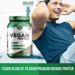 BN Labs Vegan Chocolate Fudge Protein Powder - Will You Love It?