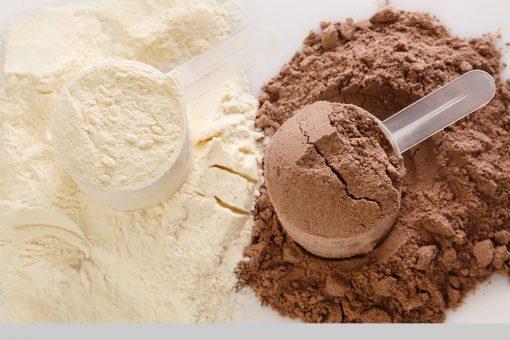 powder protein