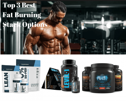 best fat burning stack options