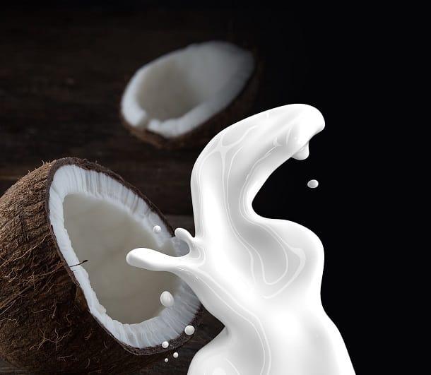 non-dairy milk keto diet