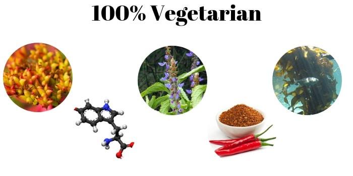 transparent labs physiqueseries 100% vegeterian