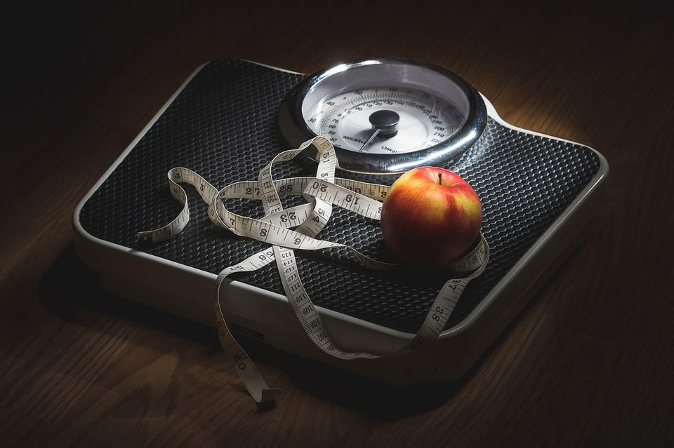 dieting plan