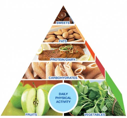 mayo pyramid